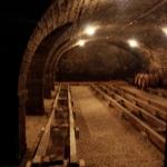 Cave Clos de Tart