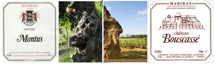 Les 30 ans de la Cave du Vigneron
