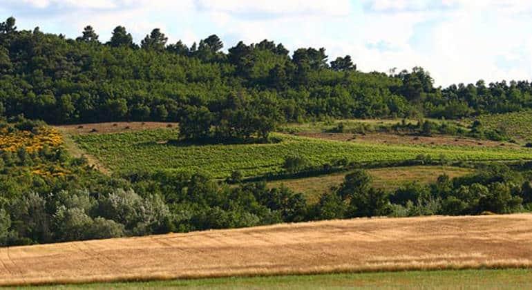 Vendredi 5 octobre, dégustation des vin de la Bastide du Claux, AOC Luberon