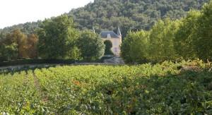 Le Château Simone et ses vignes.