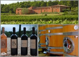 Le domaine de la Brillane, ses vignes, son vin
