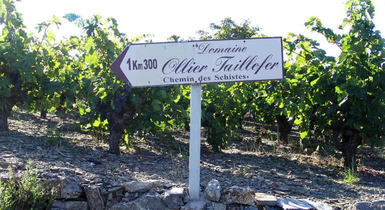 Vendredi 3 avril : Le Soleil des Faugères du Domaine Ollier Taillefer