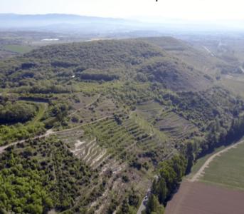 Vendredi 20 Avril Dégustation domaine Lombard en Brézème